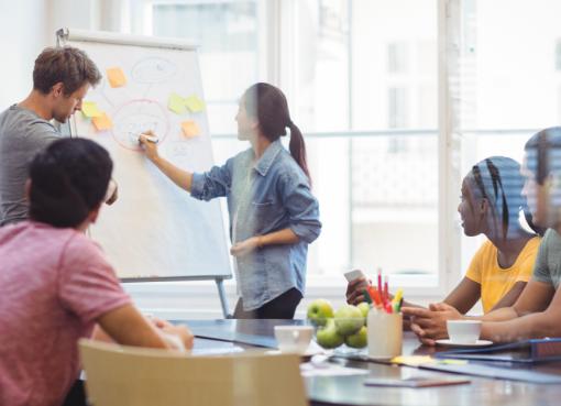Organize sua pequena empresa para o sucesso